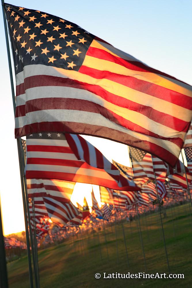 """American Flags"""