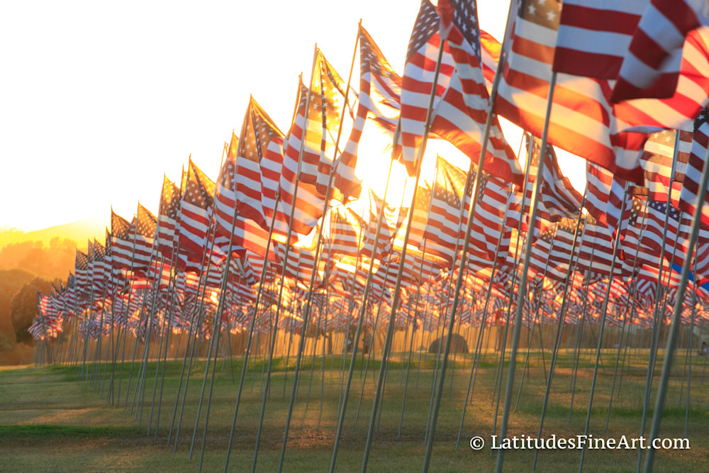 """Sea of American Flags"" 2"