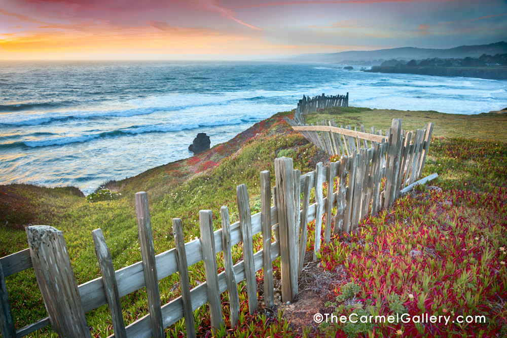 Picket fence Sea Ranch sunset Black Point Ice plant