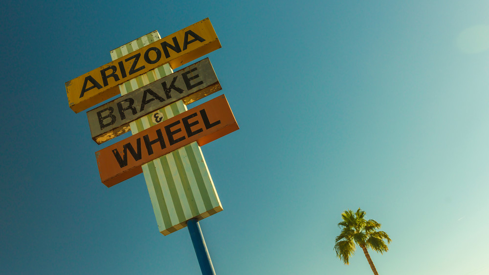 Wheels and Trees | Fine art photograph by Wayne Stadler