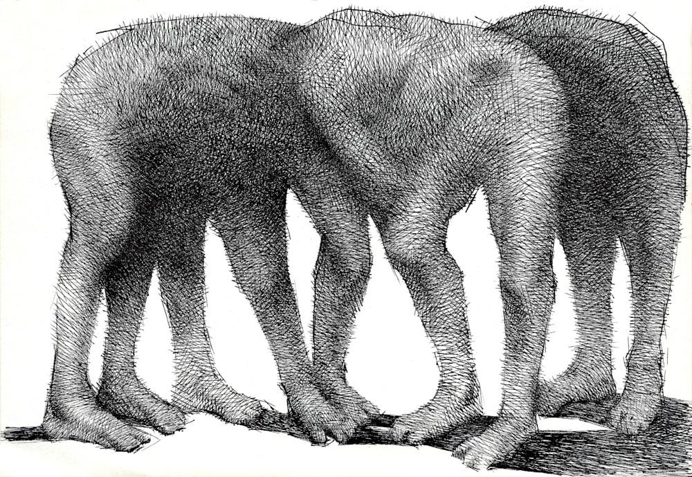 Ink Drawing- Subliminal Elephant- by Akira Beard
