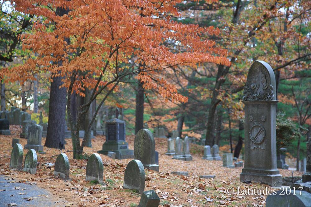 """""""Graveyard"""""""