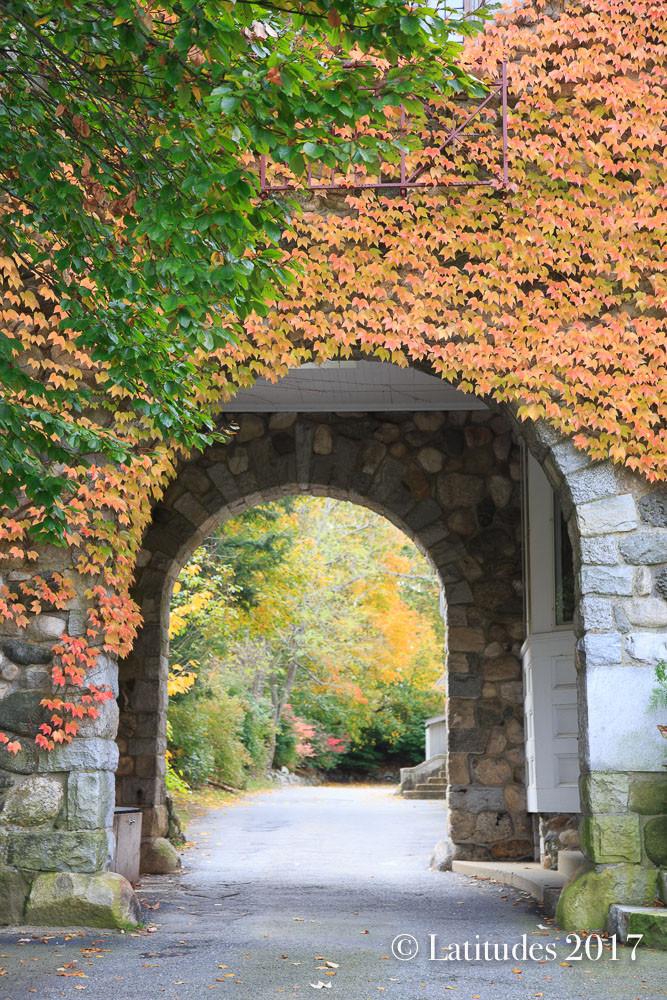 """""""Stone Arch Way"""""""
