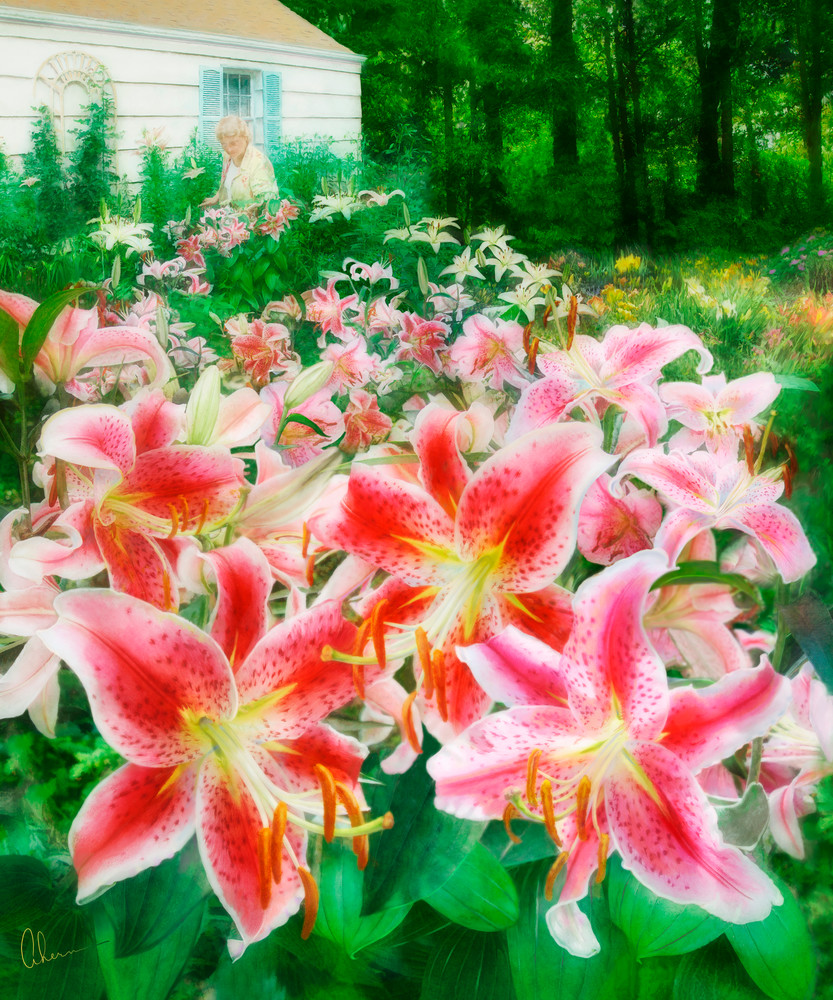 Mary's Dream Garden, an art print of an original painting of daylillies by Mary Ahern the Artist.