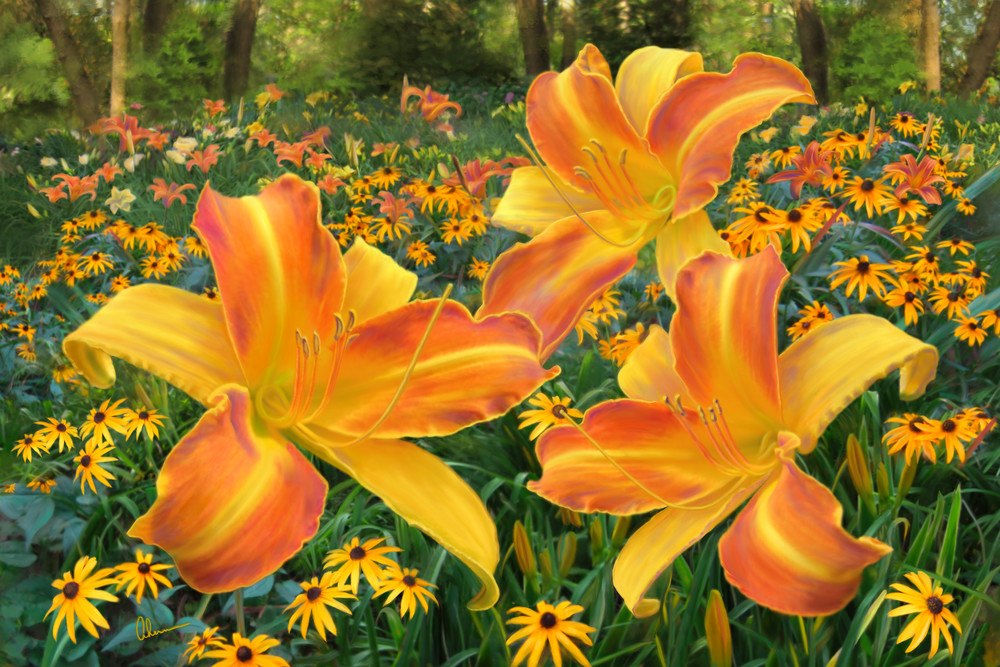 Frans Hals Daylilies and Rudbeckia art print by Mary Ahern the Artist.