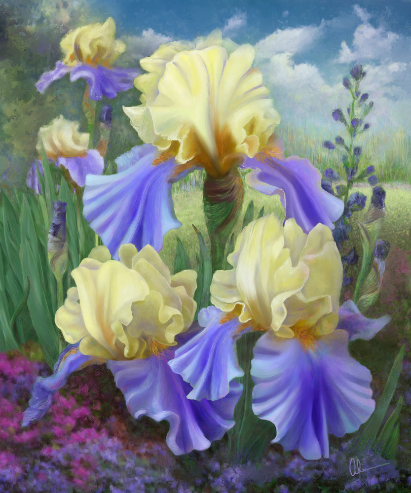 Ellen's Irises art print of an original painting by the artist, Mary Ahern