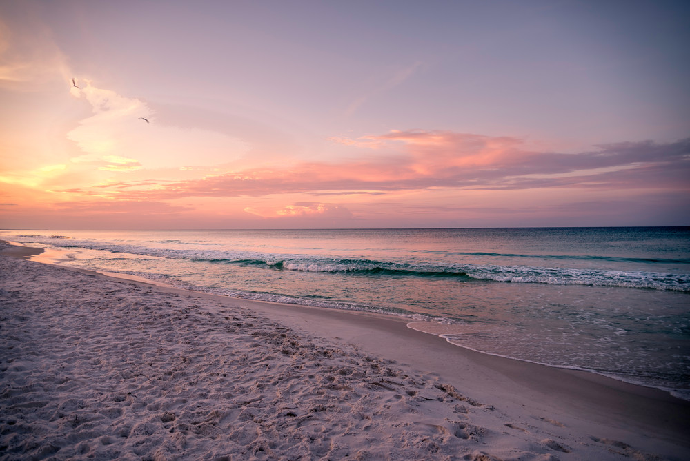 Morning Becomes Electric | Susan J Photography