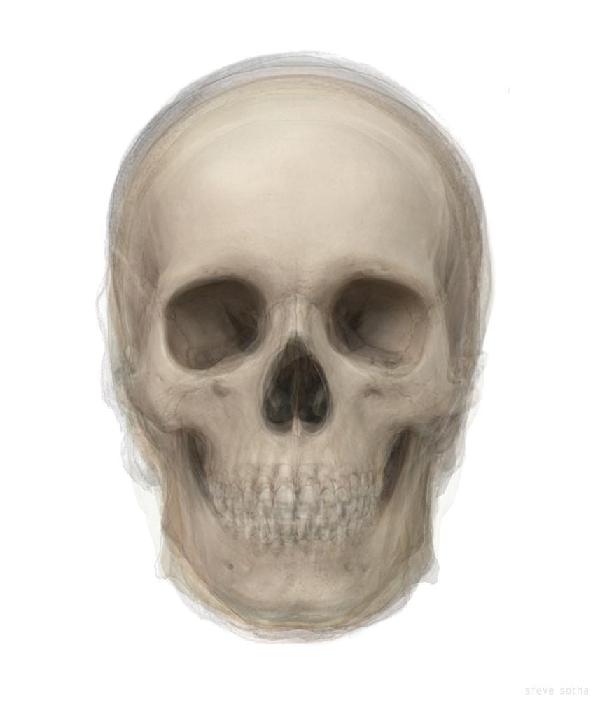 Overlay art – contemporary fine art prints of a skull
