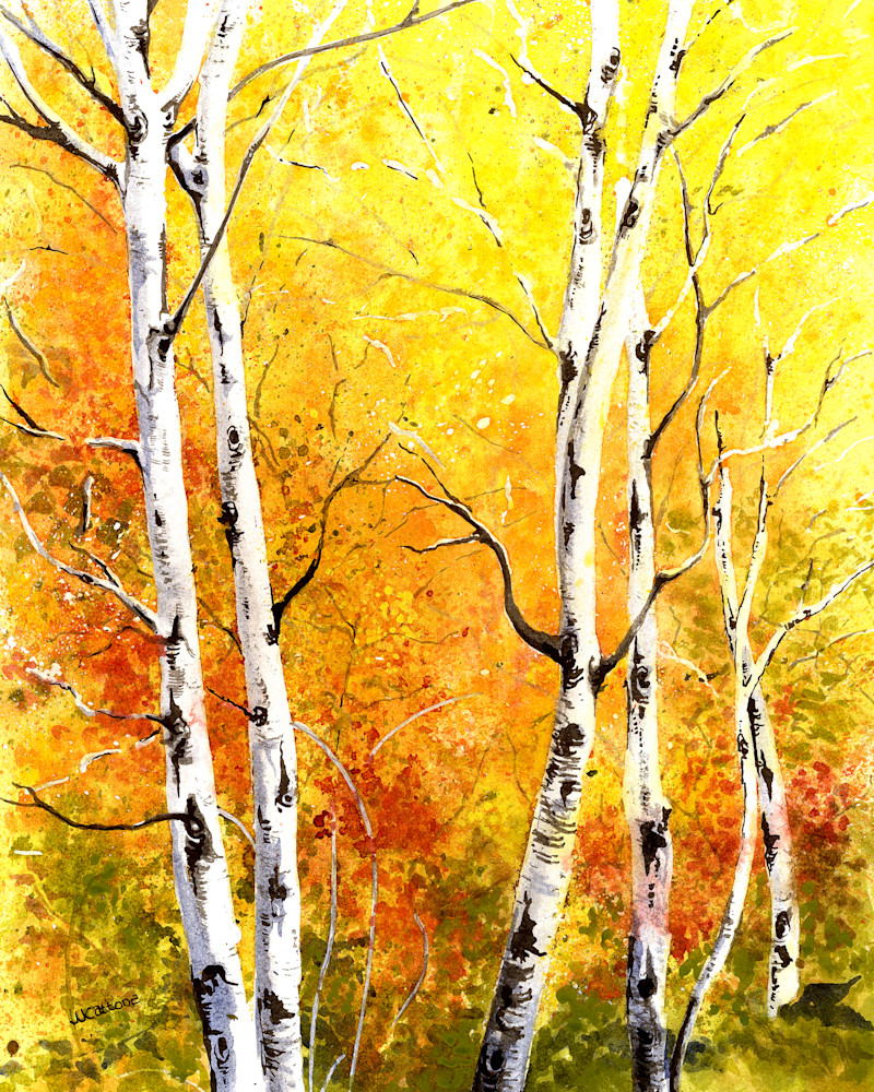 landscapes, aspen-pictures, aspen-paintings
