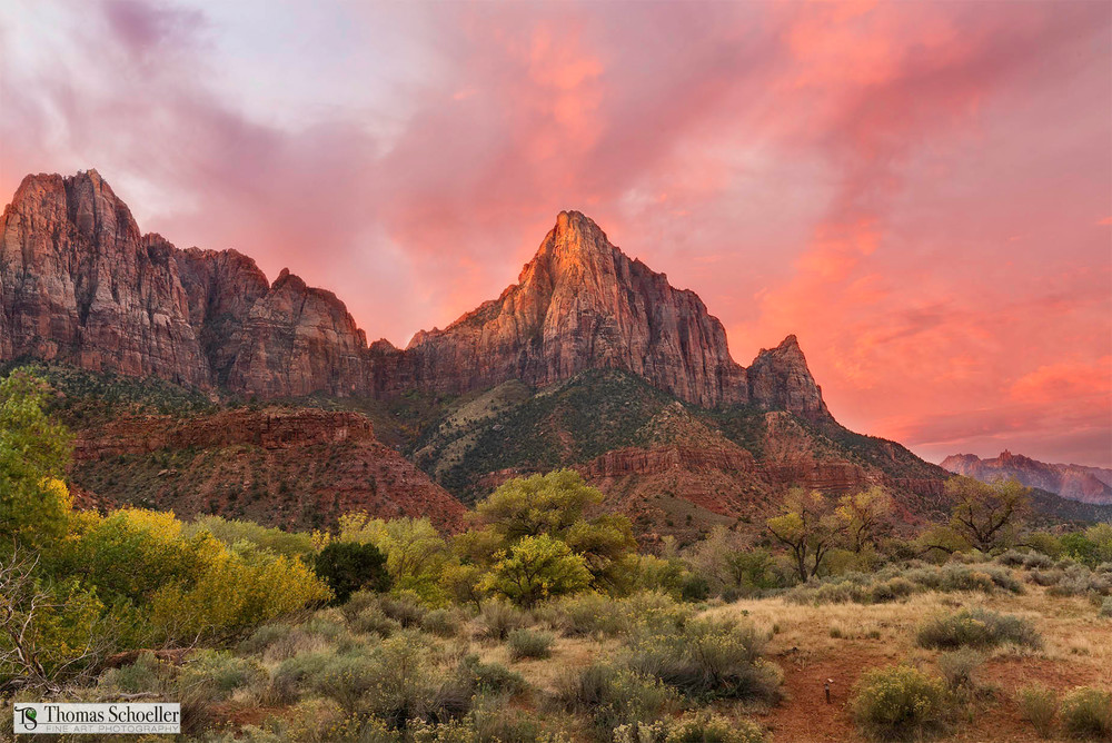 Enjoy the grandeur of Zion National Park with this spectacular Fine Art landscape by Tom Schoeller