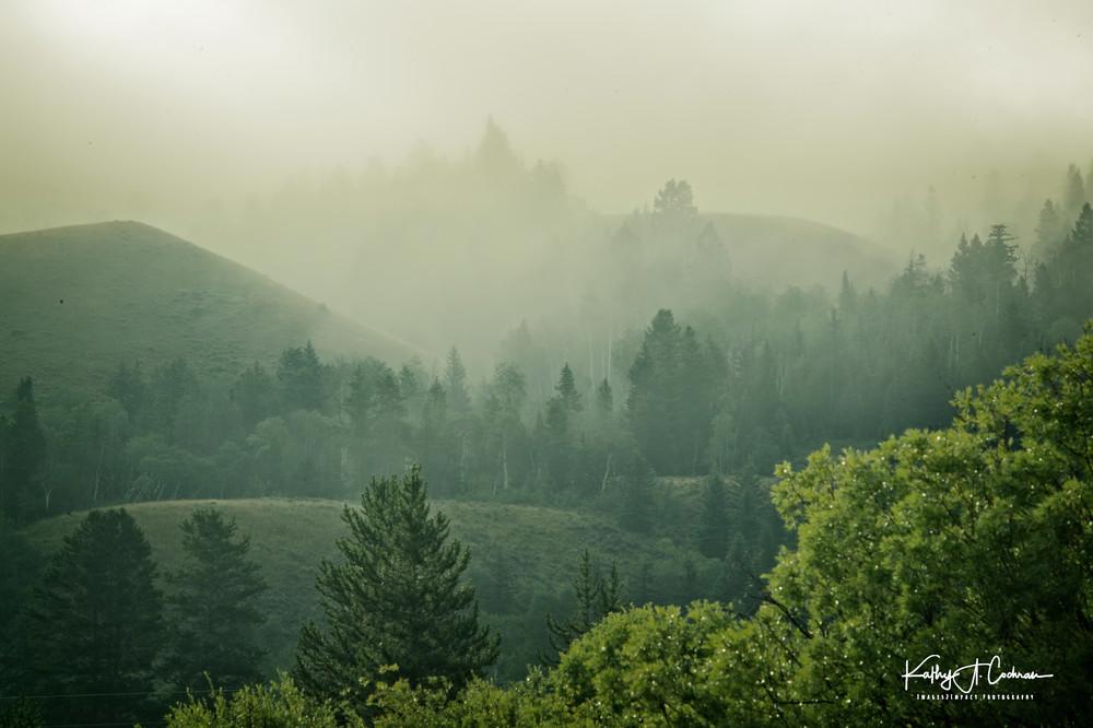 Layered Fog