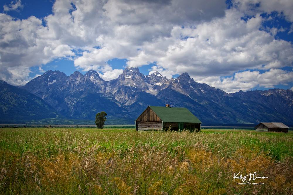 Tetons At Mormon Row Photography Art | Images2Impact