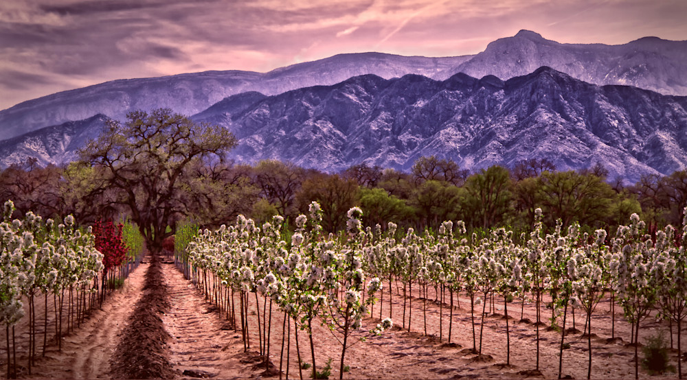 Photo of Corrales In Spring, d'Ellis Photographic Art photographs, Elsa