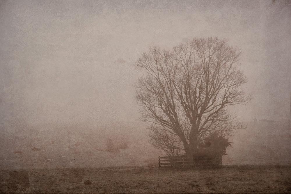 Dsf3668 2 Photography Art | Kevin Blackburn Art