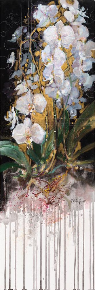 Chorus: Orchids