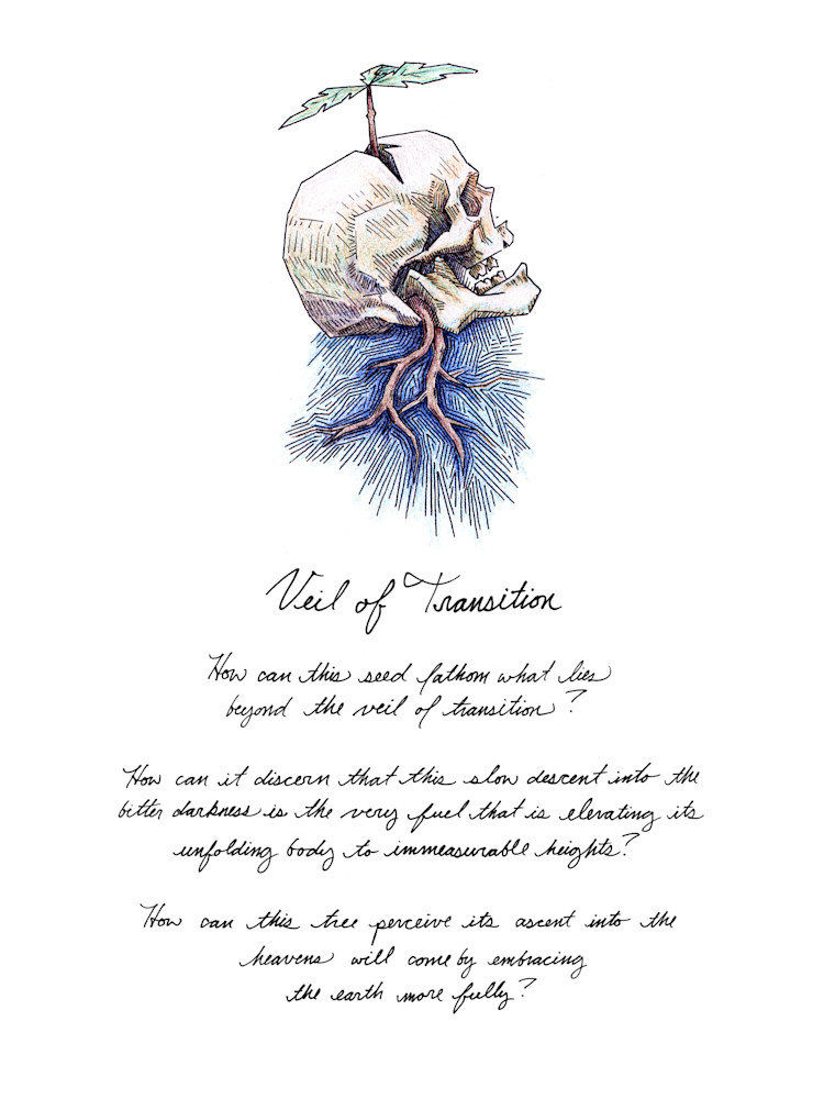 Veil of Transition - Drawing with Text | Art & Paintings by Zak D. Parsons