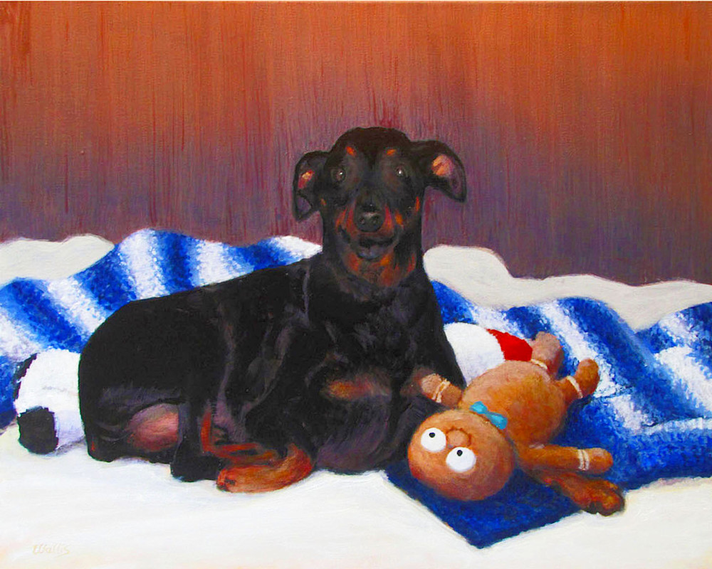 Pet portrait with his favorite toy