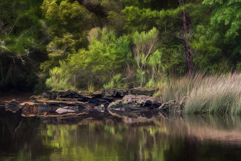 Waterway Glade - Intracoastal Waterway near Myrtle Beach, South Carolina 2015