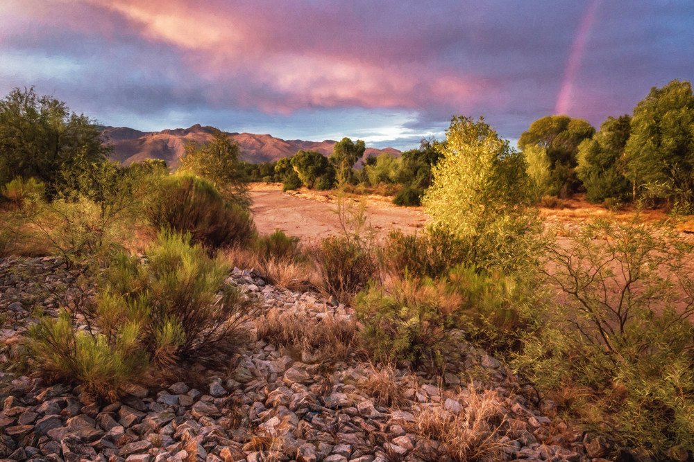 After The Rain - Sabino Creek, Arizona