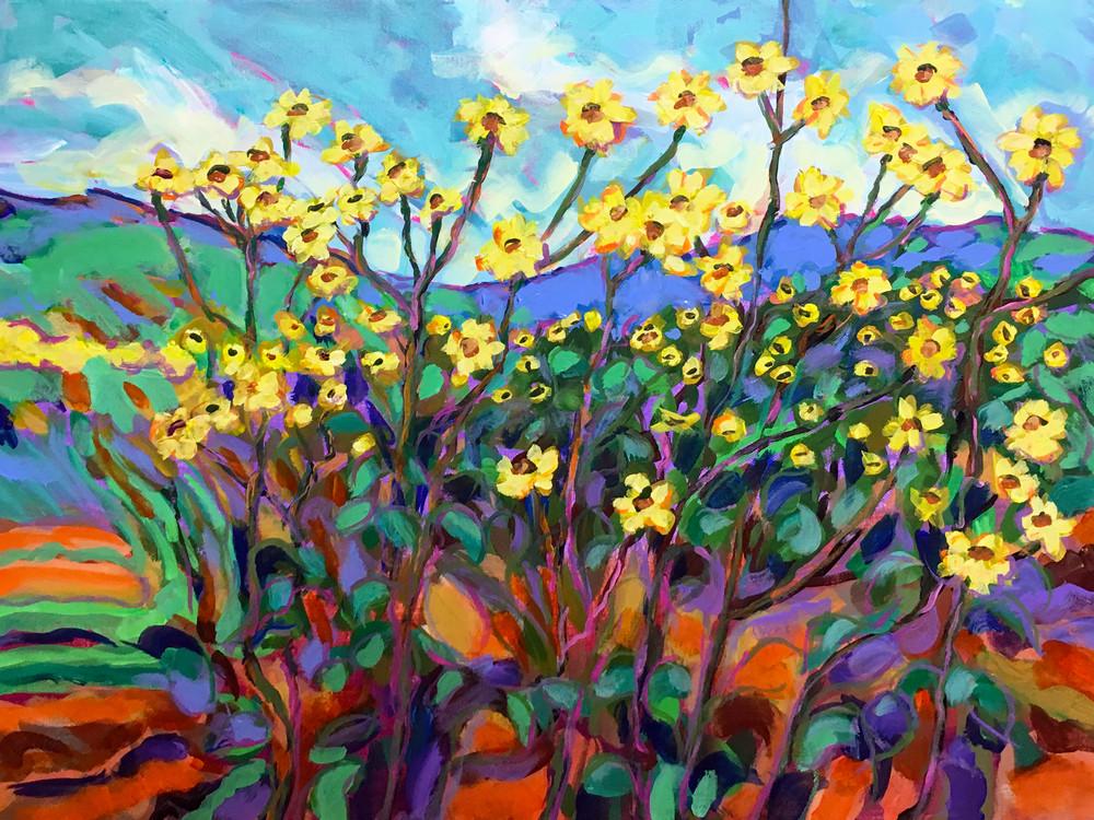 Texas Sunflower Patch