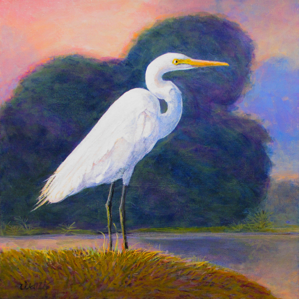Great White Egret Sunrise Display