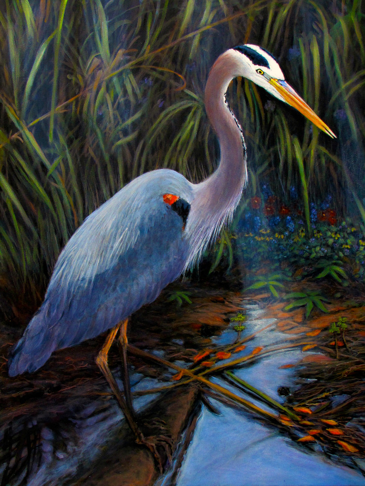 Great Blue Heron 30 X 40