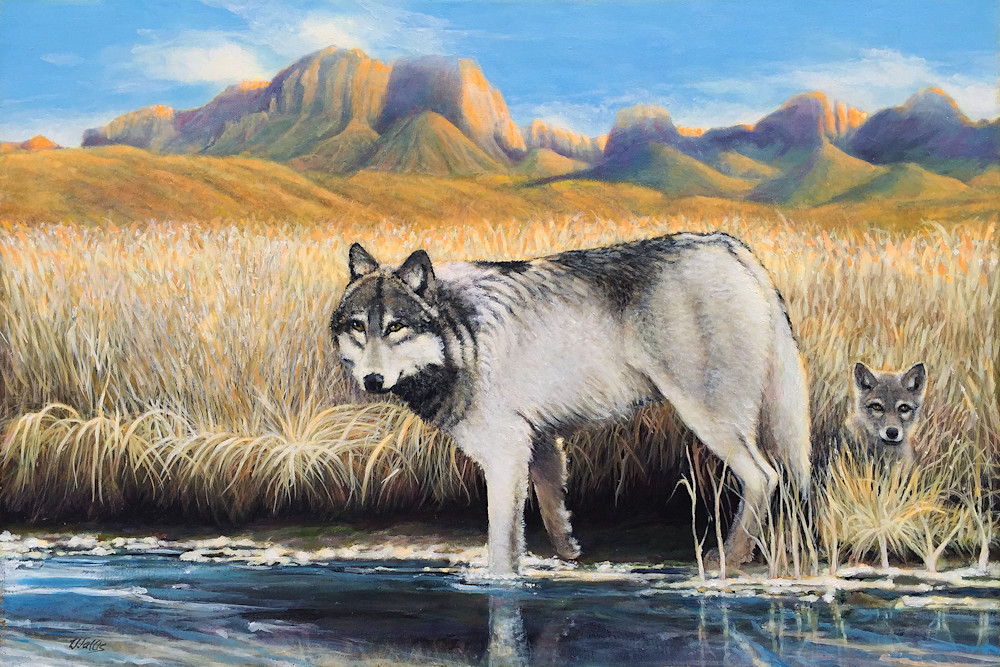 She Wolf And Cub 24X36