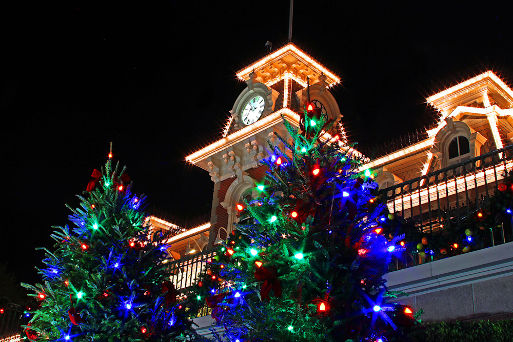 Disney Christmas Tree.Magic Kingdom Christmas Trees Disney Christmas Photos
