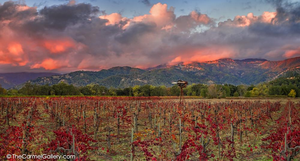 Autumn Sunset in Calistoga