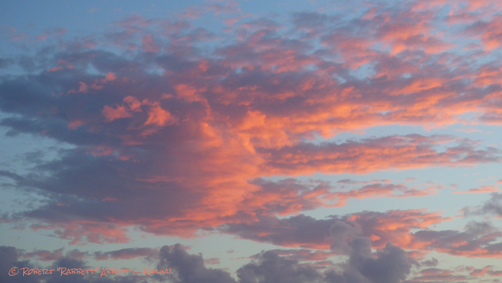 Pinks Skies #275