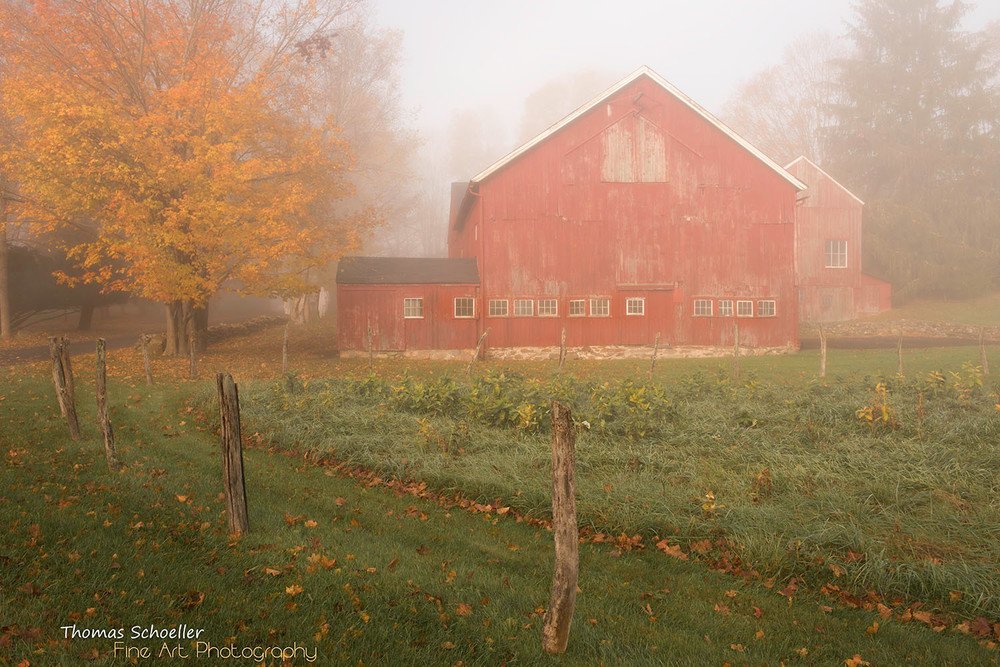 Red Barn in the morning mist/Sherman Connecticut fine art photograph by Thom Schoeller