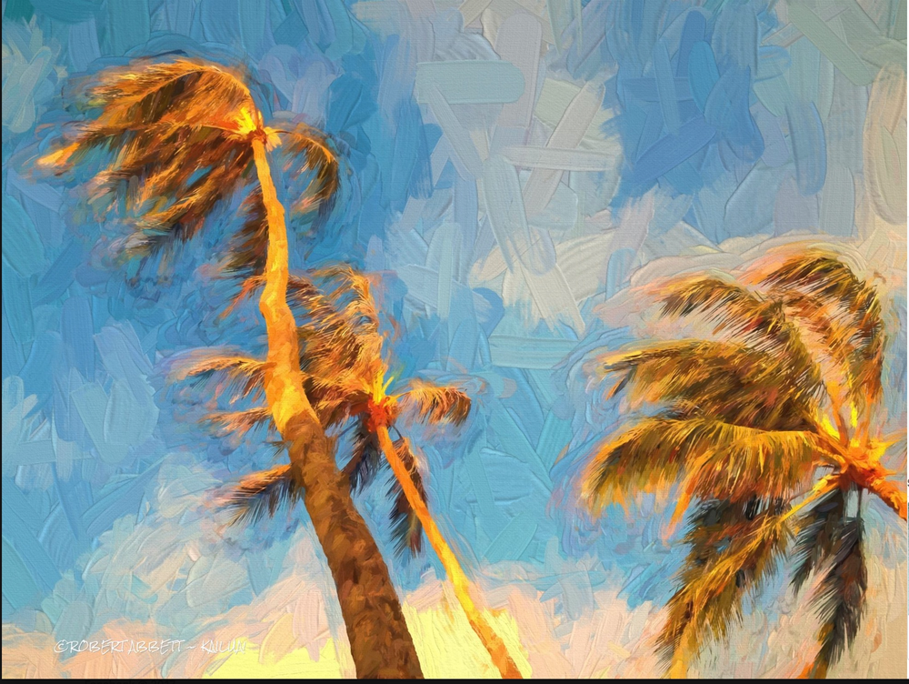 My Palms - Photo and Paint!