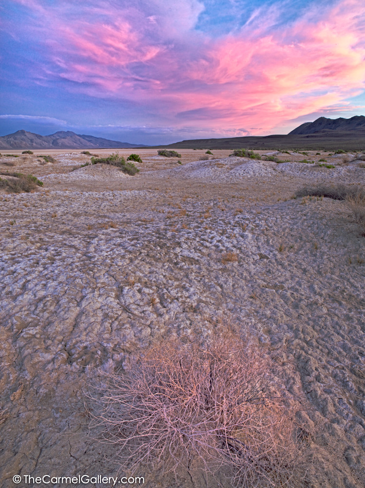Black Rock desert photo
