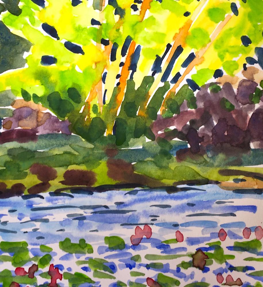 Backlit Tree By A Stream In Minnesota  Art | Jane M Mason, Co.