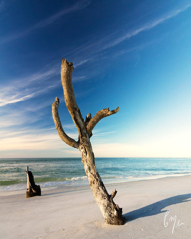 Constance Mier Photography - beaches