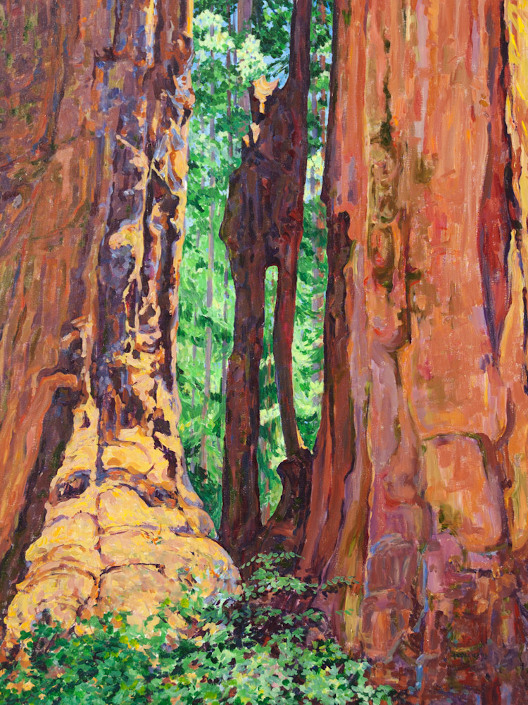 Cathedral Window on the Hazelwood Nature Trail in Sequoia National Park