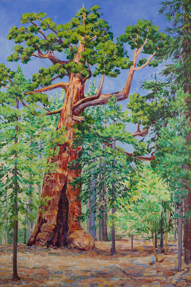 The Grizzly Giant Sequoia Tree in Yosemite National Park 4' x 6' original acrylic painting and custom size canvas prints by Joy Collier.