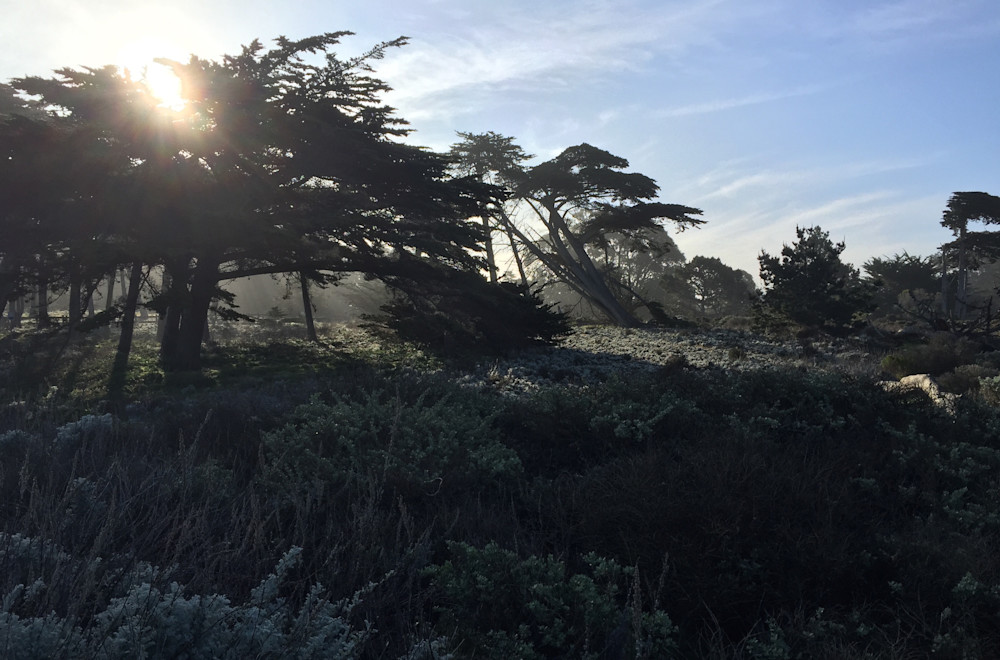 Monterey Bay Sunrise