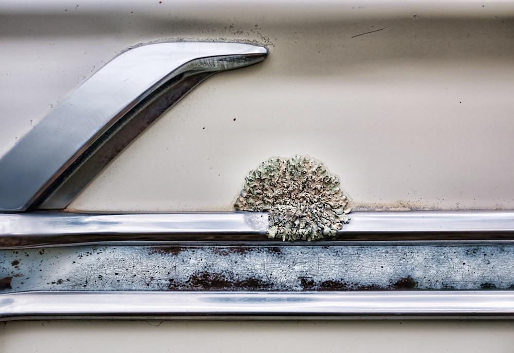 Amnesia Photography Art | Craig Edwards Fine Art Images