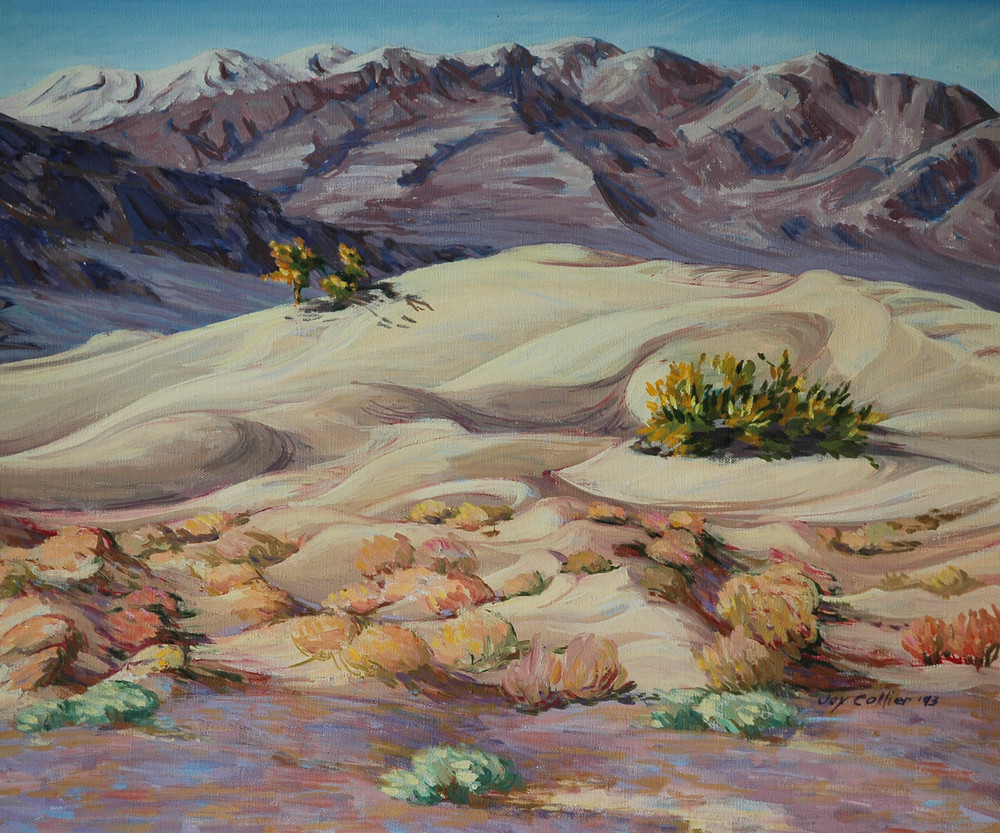 Winter Dunes at Stovepipe Wells, Death Valley National Park