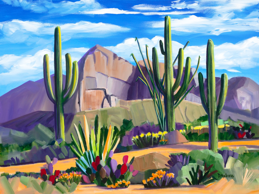Path at Pusch Ridge   Southwest Art Gallery Tucson