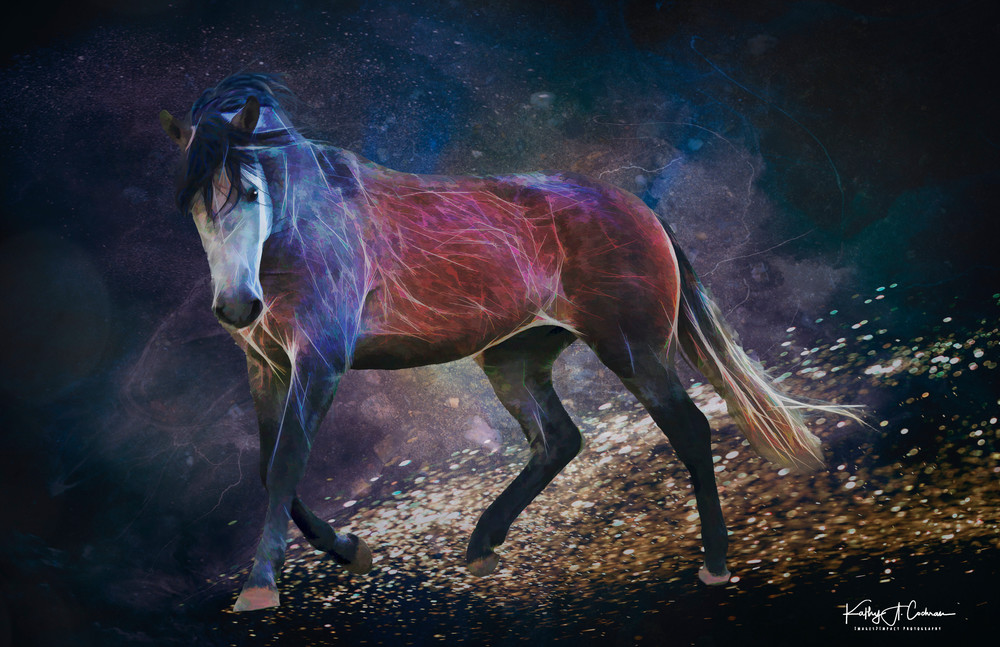 Equine Skyscape Photography Art | Images2Impact