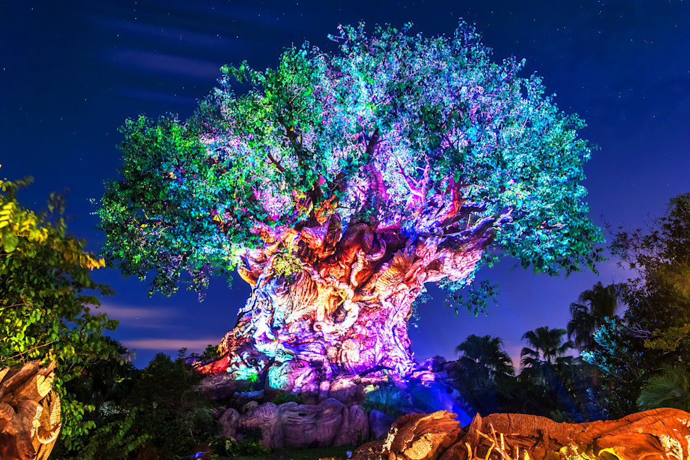 Tree of Life Awakenings - Disney Art for Sale | William Drew