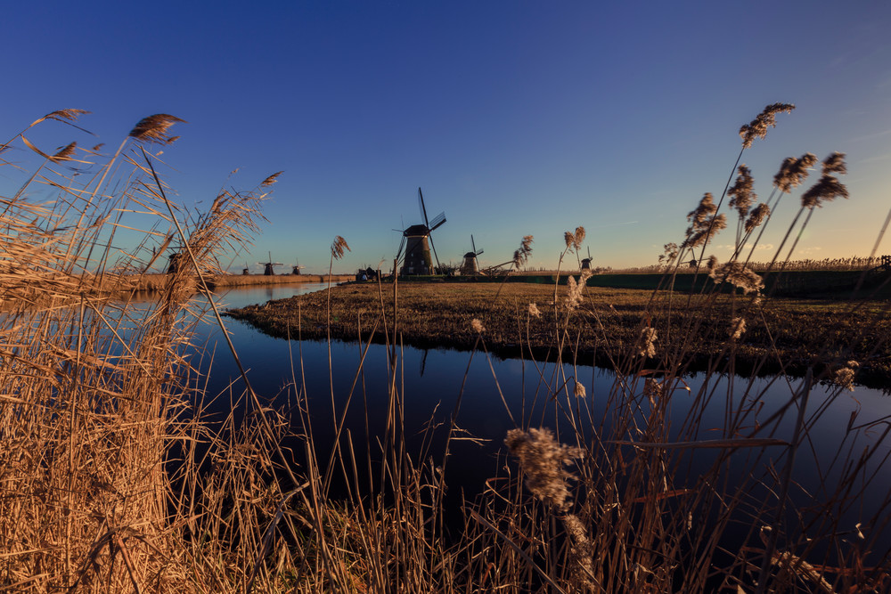 Rural Rotterdam 0031
