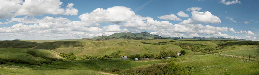 Duke's View
