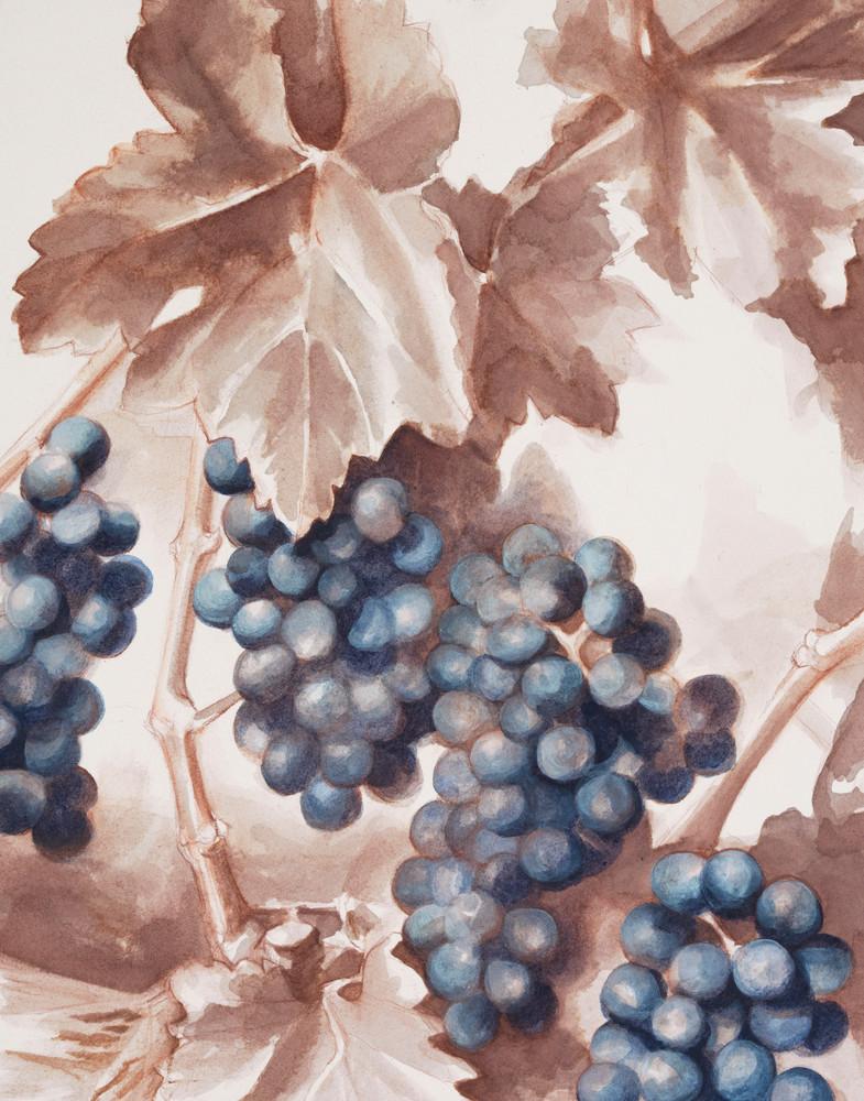 Fruition, fine art print by Christina LoCascio