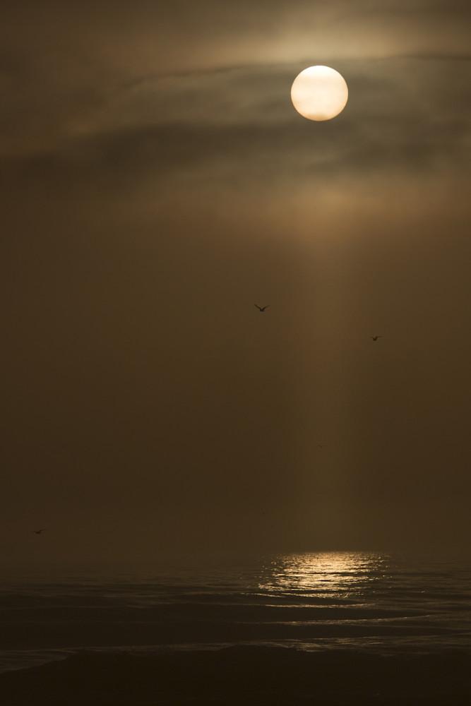 Mike Jensen Photography New Smyrna Beach 180208 5240