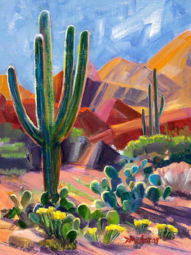 Derek's Desert | Southwest Art Gallery Tucson | Madaras