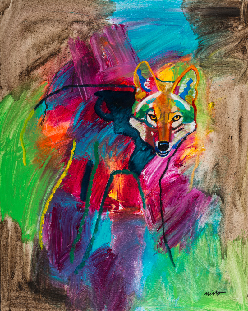 Coyote Emerging | John Nieto