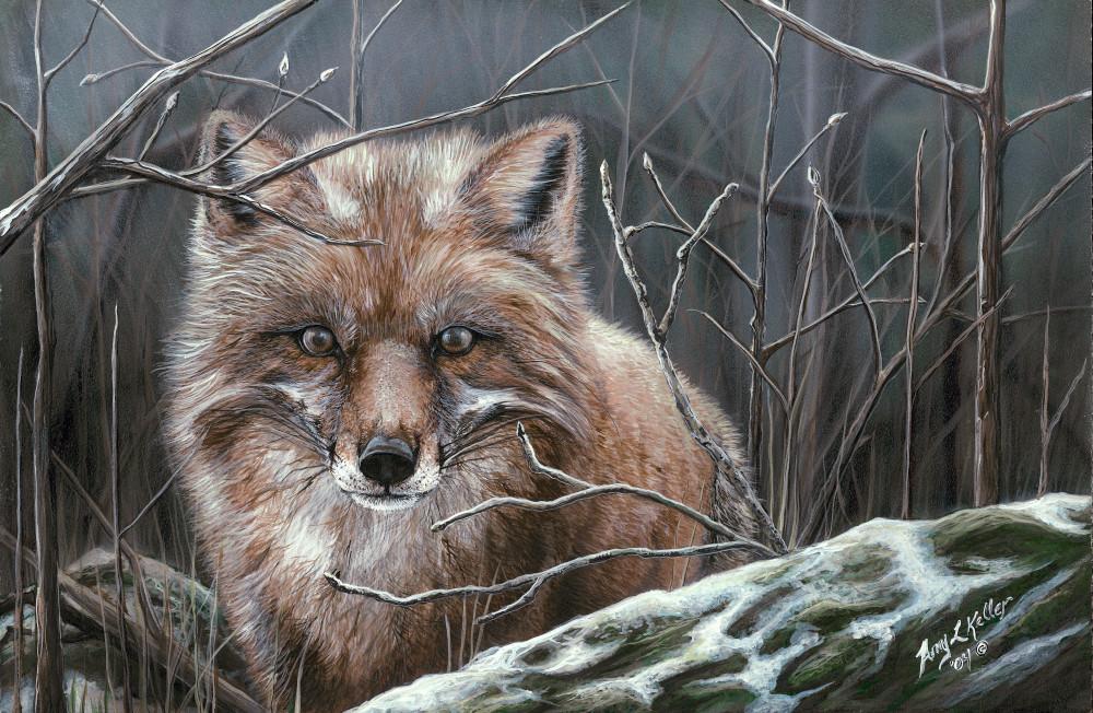 Misty Morning Art | Amy Keller Rempp Art
